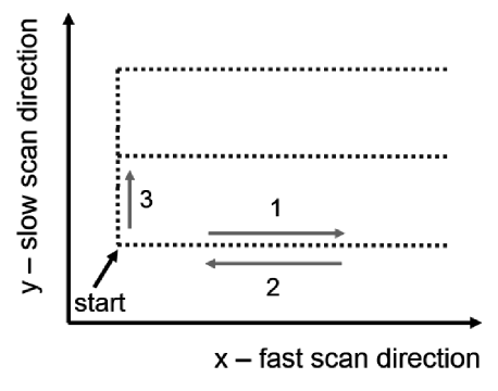 The idea of a scan realized in the AFM. Starting from zero position, the voltage is applied leading to tube bending along x-axis (fast scan direction (1)), followed by voltage