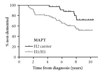 Kapla n-Meier curve illustrating the cumulative probability of remaining free of dementia stratified by MAPT genotype in an incident pD cohort