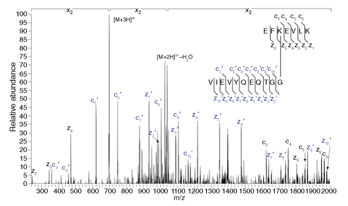 An ETD MS/MS spectrum of a SUMO(1)-isopeptide derived from the aspartic acid cleavage/trypsin digestion of the SUMO(1)ylated E2-25K protein. Source