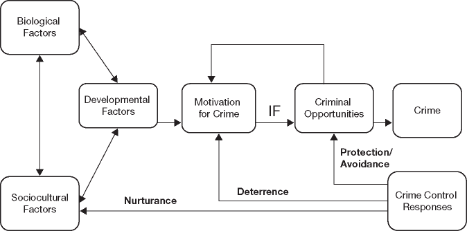 Vila's General Evolutionary-Ecological Paradigm of Criminal Behavior Reprinted with permission from Vila, B.J. (1997). Human nature and crime control