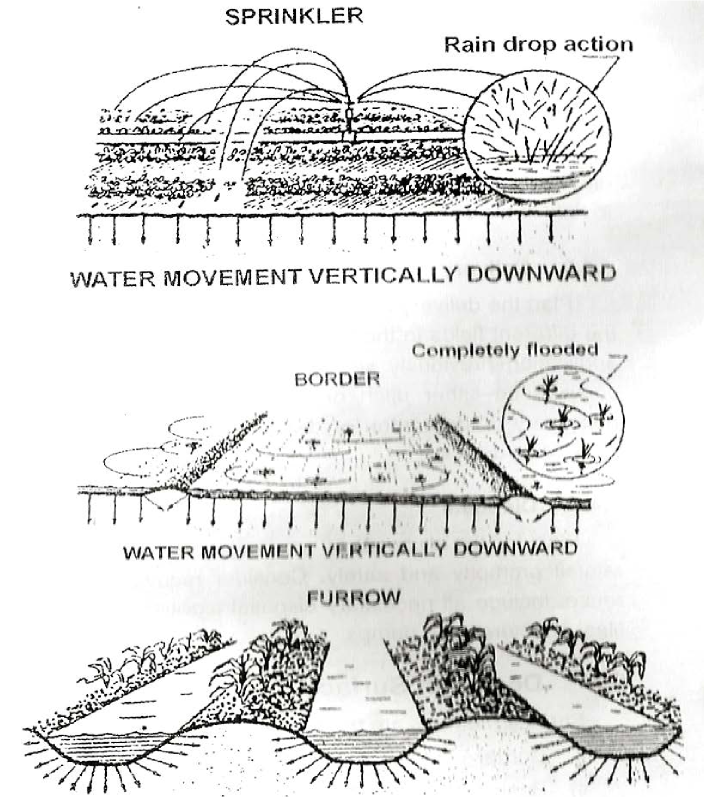 Water movement vertically downward