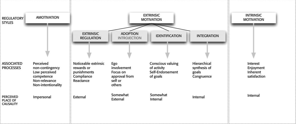 A taxonomy of human motivation