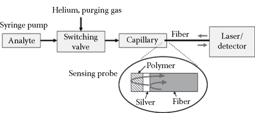 Structure of an EFFPI gas sensor