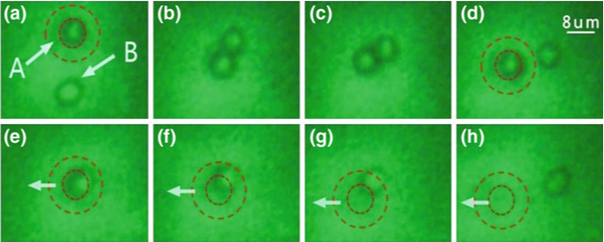 a, b shows the pairing of a two-cell dimer, with dashed concentric circles denoting the beam spot of theLP2i trap, followed by Fig