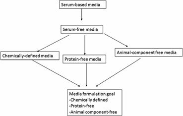 Serum free media basal media animal cell culture academic 81 a schematic showing the evolution of different media types ccuart Gallery