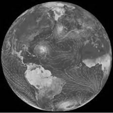 A NASA image measuring temperatures on the Earth reveals the pattern of ocean currents (photo courtesy NASA, Visible Earth Project).