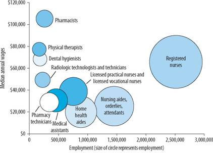 Employment and Earnings in Selected Health Care Practitioner and Health Care Support Occupations