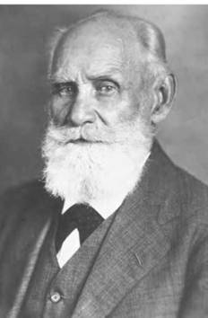 Psychologist Ivan Pavlov helped show that people's behaviors can be modified over time (Art Archive).